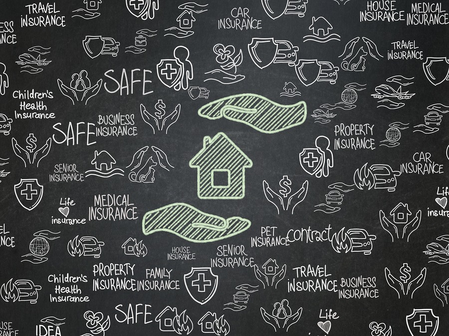Insurance concept: Chalk Green House And Palm icon on School board background with  Hand Drawn Insurance Icons, School Board